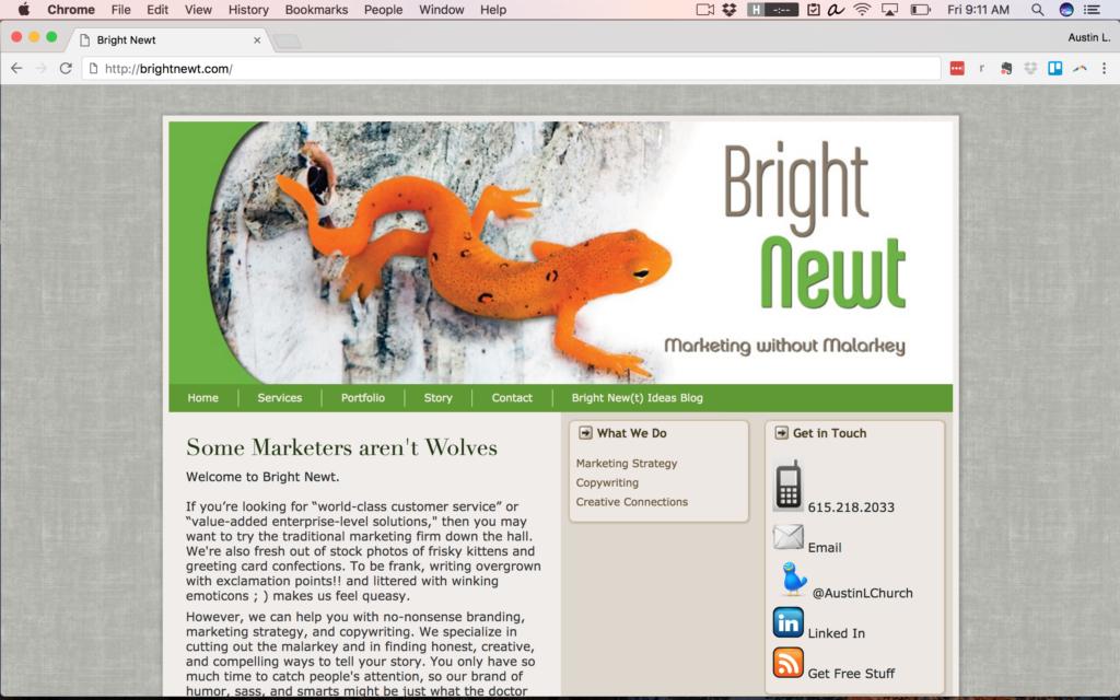 BrightNewt.com in 2011